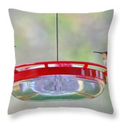 Peace At The Feeder Throw Pillow