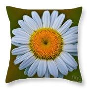 Peace Daisy Throw Pillow