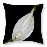 Peace Lily 2 Throw Pillow