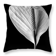 Peace Lily Iv Throw Pillow