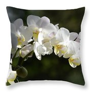 Peace Love Happiness 1 Throw Pillow