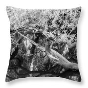 Peace On The River Throw Pillow
