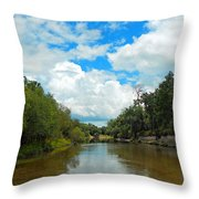 Peace River 4 Throw Pillow