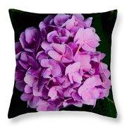 Peaceful Beauty Throw Pillow