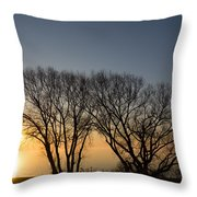 Peaceful Blues And Golds  Throw Pillow