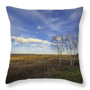 Peaceful Countryside Throw Pillow
