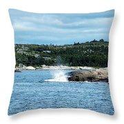 Peaceful Cove Throw Pillow