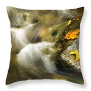 Peaceful Creek Throw Pillow