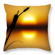 Peaceful Dawn Throw Pillow