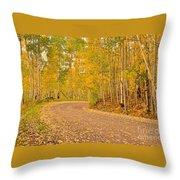 Peaceful Drive Throw Pillow