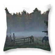 Peaceful Farm Scene Throw Pillow