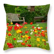 Peaceful Interlude Throw Pillow
