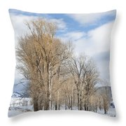 Peaceful Moments II Throw Pillow