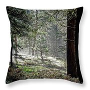 Peaceful Morning Throw Pillow