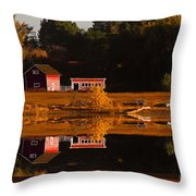 Peaceful Morning Throw Pillow by Steven Reed