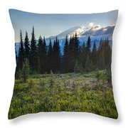 Peaceful Mountain Flowers Throw Pillow