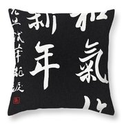 Peaceful New Year's Wishes Throw Pillow