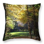 Peaceful Path Throw Pillow by Kathy DesJardins