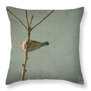 Peaceful Perch Throw Pillow