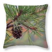 Peaceful Pinecone Throw Pillow by Stephen Melcher