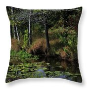 Peaceful Pond Throw Pillow