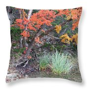 Peaceful Retreat Lost Maples Texas Hill Country Throw Pillow