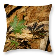 Peaceful Shadow In The Woods Throw Pillow