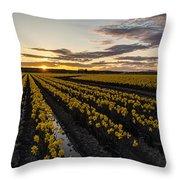 Peaceful Skagit Serenity Throw Pillow
