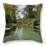 Peaceful Spring Throw Pillow