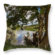 Peaceful View Throw Pillow by Robert Bales