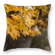 Peacefull Fall Walk Throw Pillow