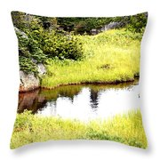 Peacful Place Throw Pillow