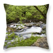 Peacful Places 2 Throw Pillow