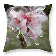 Peach Blossom In Ice Throw Pillow