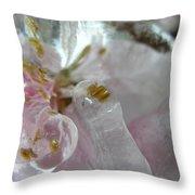 Peach Blossom In Ice Three Throw Pillow
