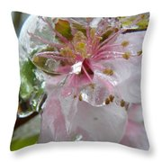 Peach Blossom In Ice Two Throw Pillow