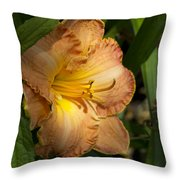 Peach Daylily Delight Throw Pillow