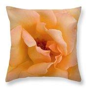 Peach Enchantment Throw Pillow
