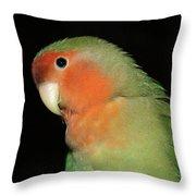 Peach Faced Lovebird Throw Pillow