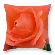 Peach Faced Rose Throw Pillow