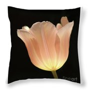 Peach Glow Throw Pillow