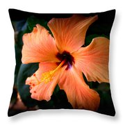 Peach Hibiscus Bloom Throw Pillow