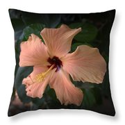 Peach Hibiscus  Throw Pillow