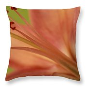 Peach Lily 1 Throw Pillow