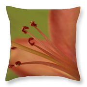 Peach Lily 2 Throw Pillow