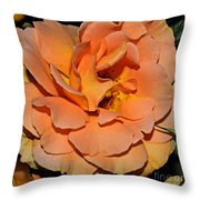 Peach Rose - Digital Paint Throw Pillow