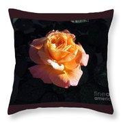 Peach Rose Palm Desert Throw Pillow
