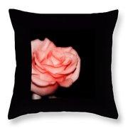 Peach Rose Portrait Throw Pillow