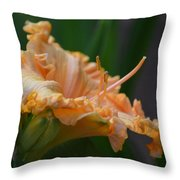Peach Rufflette - Lily Throw Pillow