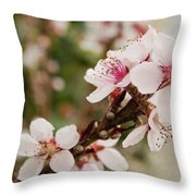 Peach Tree Blossoms Throw Pillow